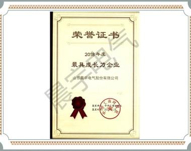 zui 具成长力企业中华工商时报
